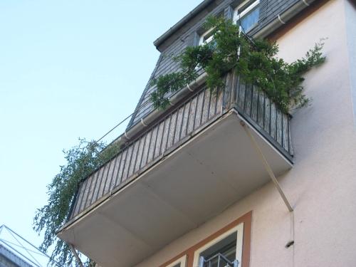 jahresidee 2012 metallidee feng shui frankfurt metallbau leonhardt gmbh co kg metallidee 2011. Black Bedroom Furniture Sets. Home Design Ideas